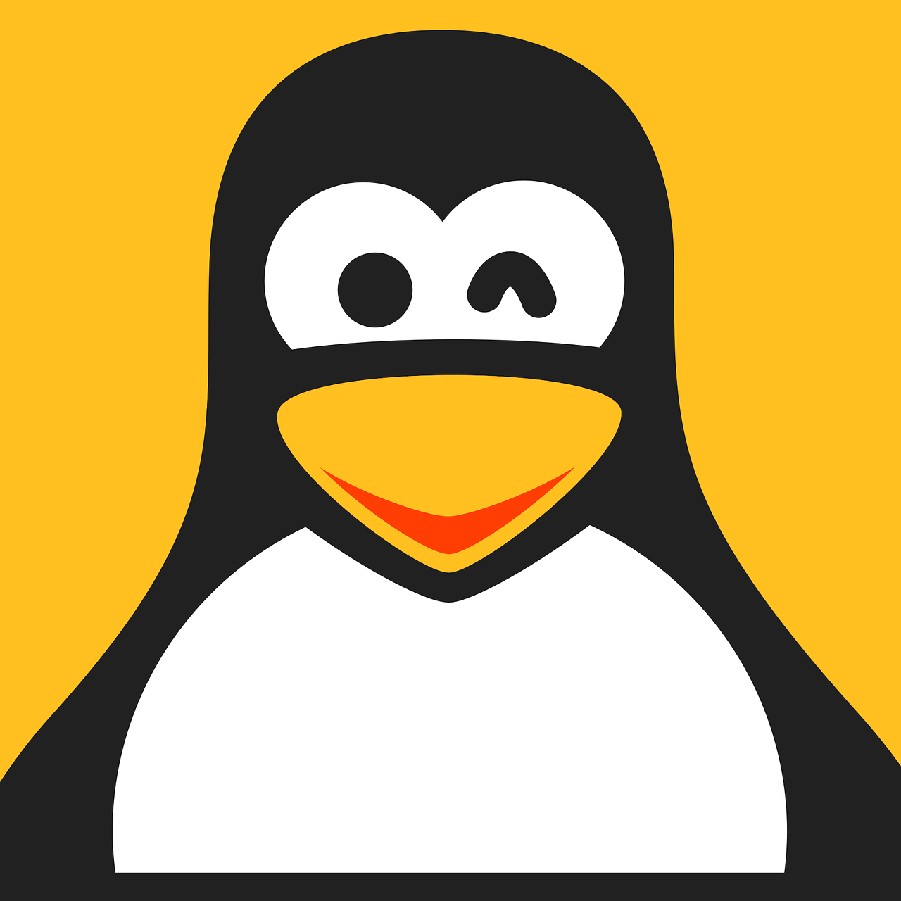 Understanding Linux File Permissions: The Complete Guide